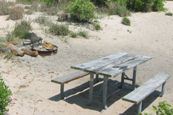 a picnic table and fire ring in one of First Landing's campsites