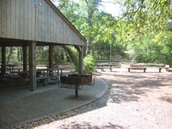 First Landing's group picnic facility