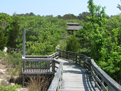 a boardwalk and outdoor shower at First Landing State Park