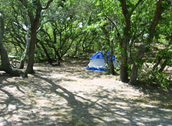 A Tent Set Up In First Landing Campsite