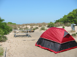 A Campsite At First Landing