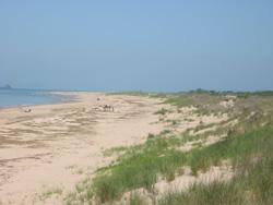 First Landing S Swimming Beach
