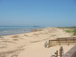 A View Of The Chesapeake Bay Beach